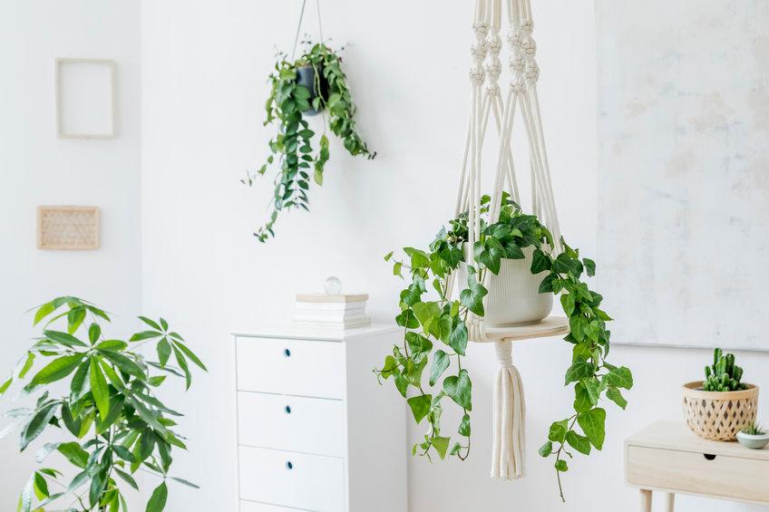 décoration macramé
